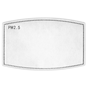 Replacement PM2.5 Filter 5Pack-FILTER-01