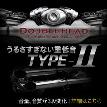 DOUBLE HEAD TYPE-2