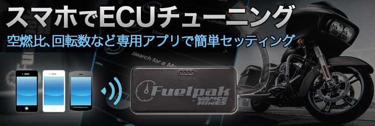 FUELPAK FP-3